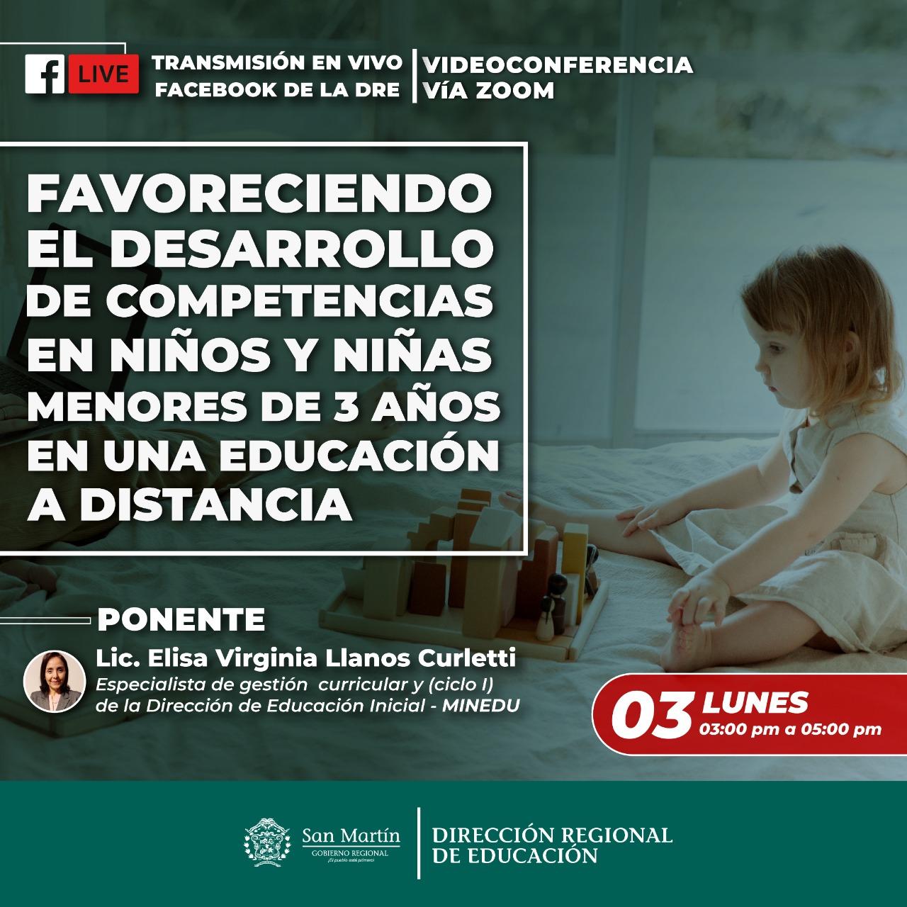 Favoreciendo el Desarrollo de Competencias en niños y niñas menores de 3 años en una Educación a Distancia